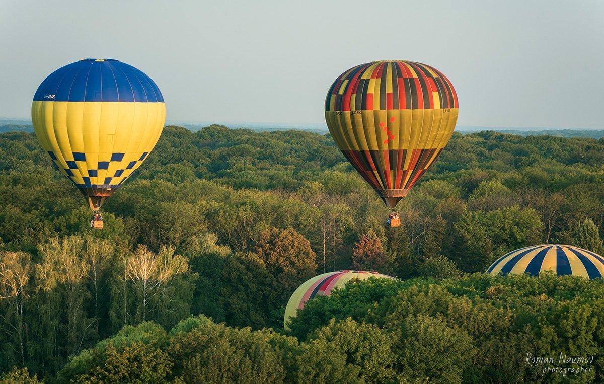 До Дня Незалежності влаштують масштабний фестиваль повітряних куль «Олександрійська феєрія», фото-13