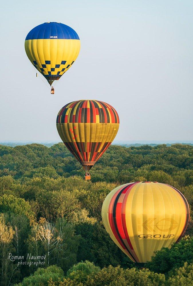 До Дня Незалежності влаштують масштабний фестиваль повітряних куль «Олександрійська феєрія», фото-4