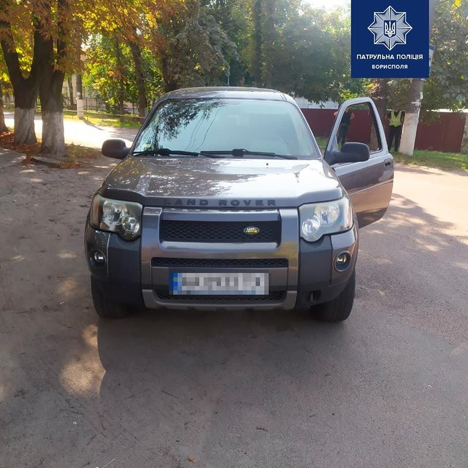 В Борисполі патрульні притягнули до відповідальності водія, що збив собаку, фото-1
